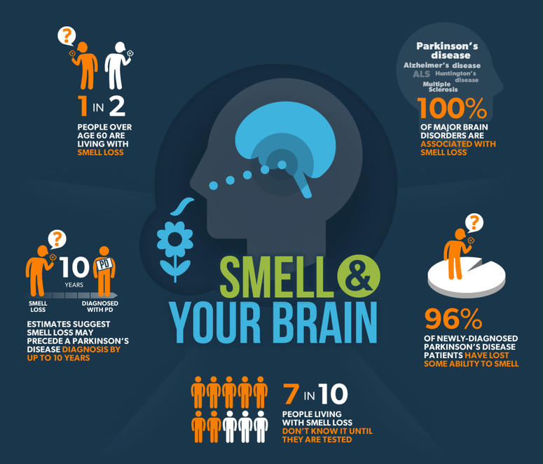 INFOGRAPHIC: Smell and Your Brain