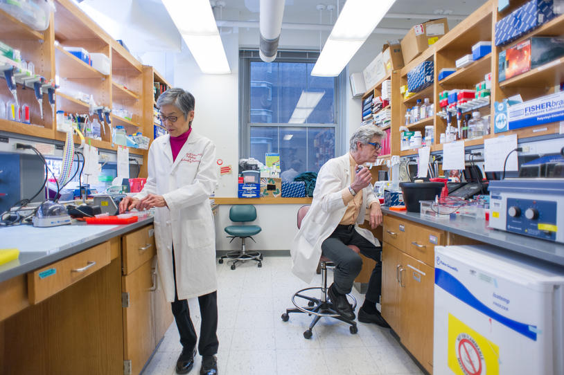 Two researchers in a lab