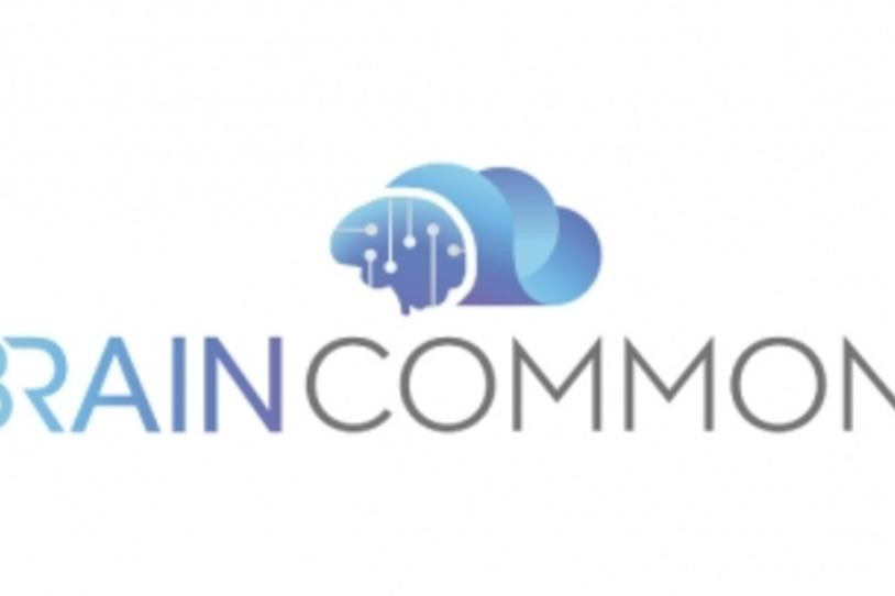 Brain Commons Logo