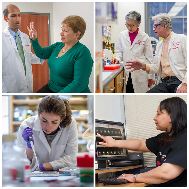 Grid of four images including researchers in lab, doctor with a patient and nurse pointing to computer screen.