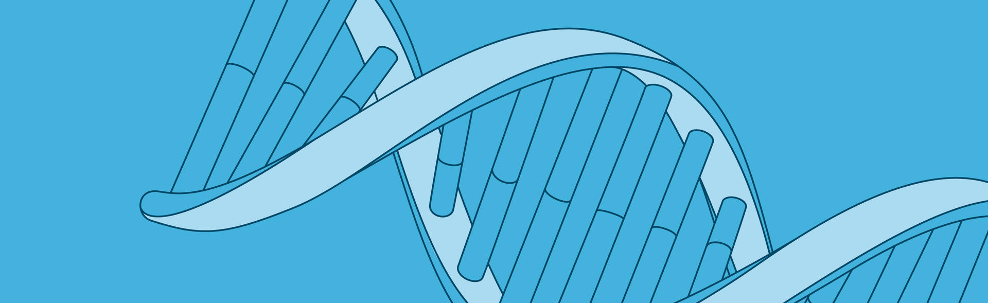 Illustrated close up of DNA.