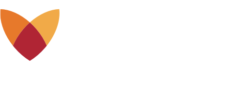 Fox Insight logo